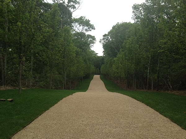 Path After Landscaping 1