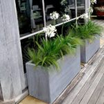 Container Gardens & Planters – Image 12