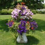 Container Gardens & Planters – Image 14