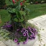 Container Gardens & Planters – Image 21
