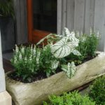 Container Gardens & Planters – Image 5